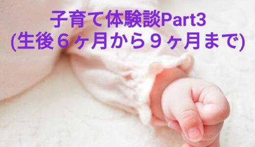【子育てブロガーが教える】子育て体験談Part3(生後6カ月から9カ月)